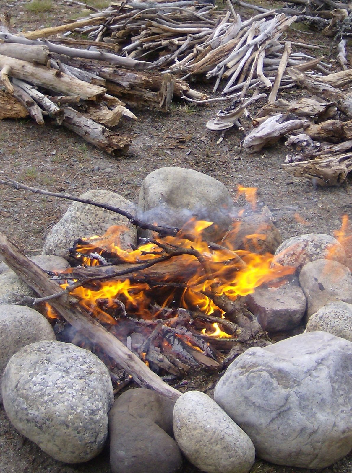 Learn how to start a fire in the wild