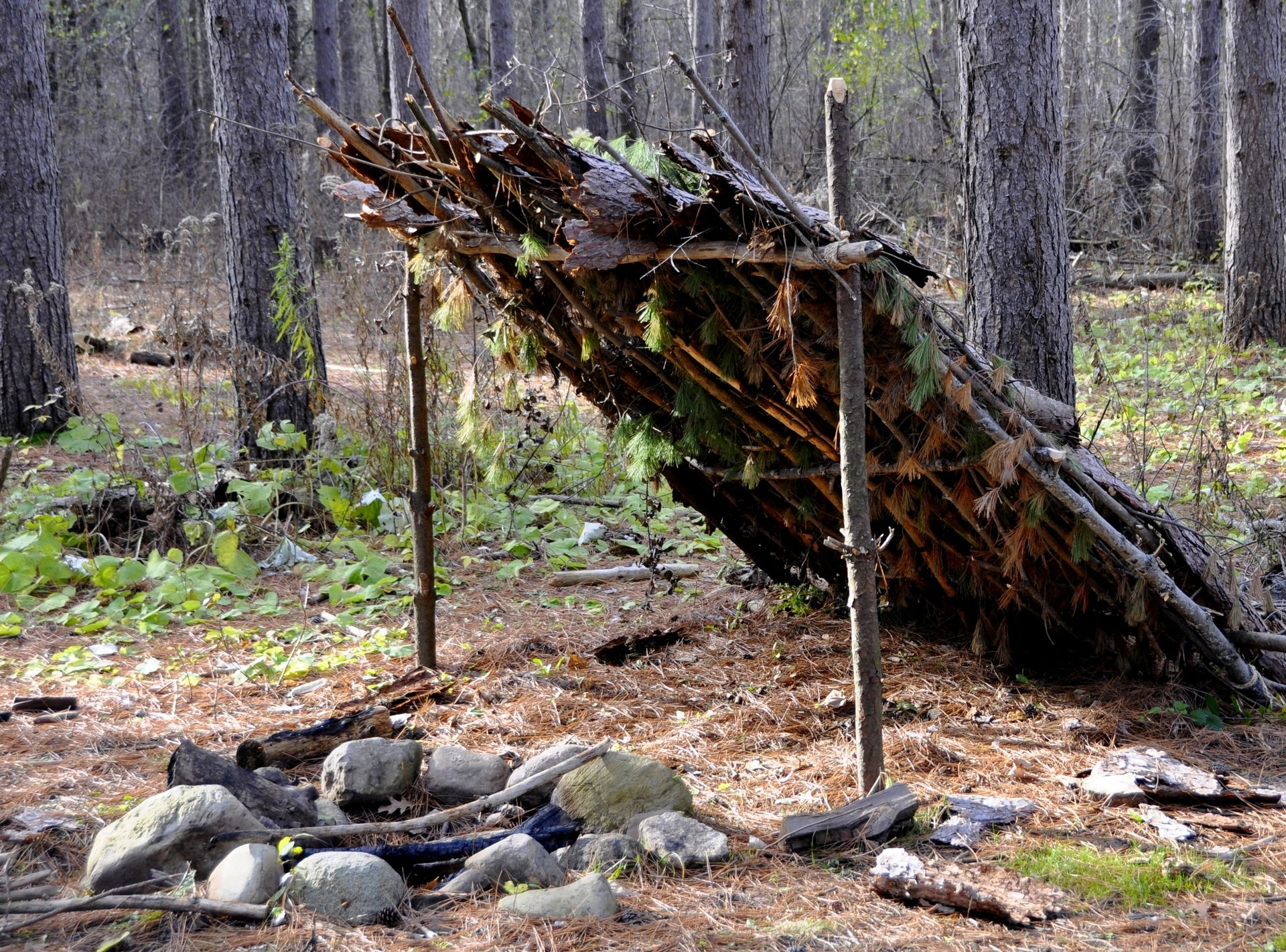 Build your own shelter in the wild
