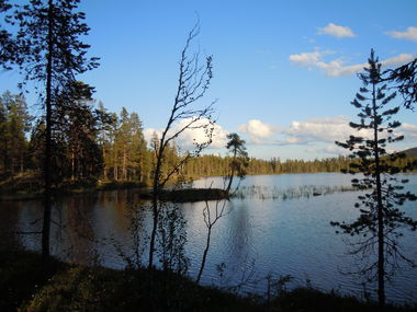 Exclusive fishing in Lapland