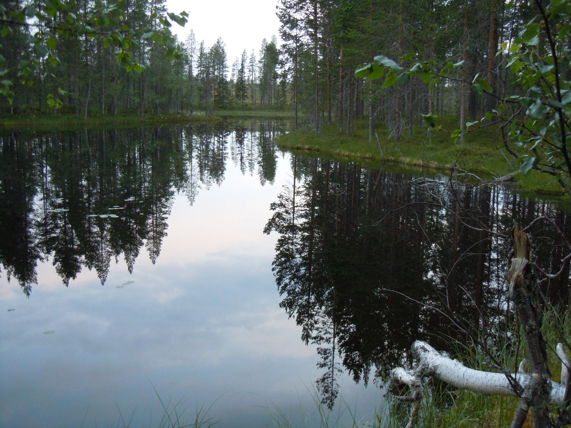 Wilderness Life fishing camp in Swedish Lapland