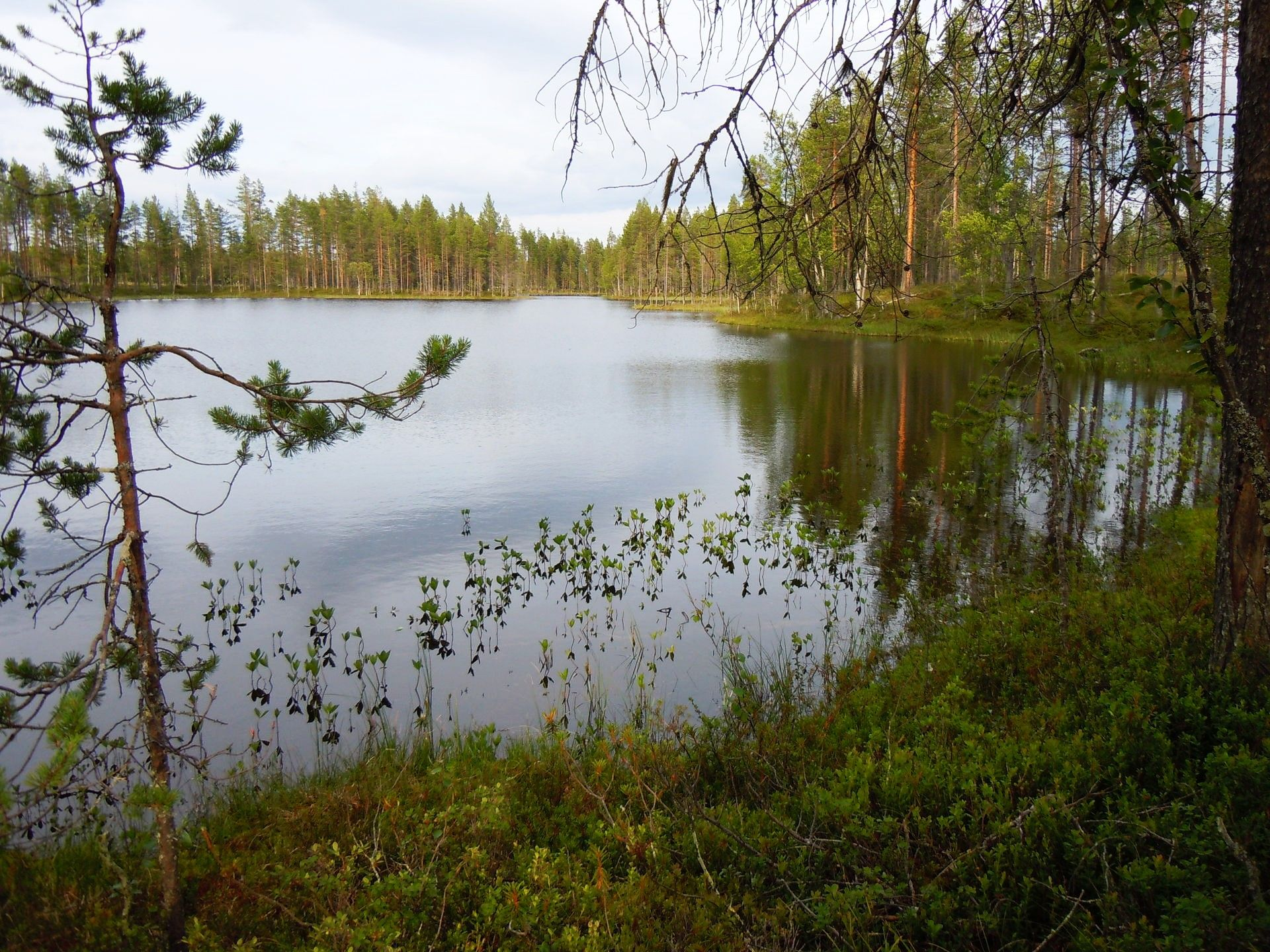 Fishing in a wilderness lake in Lapland