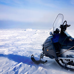 Husky & Snowmobile in Lapland
