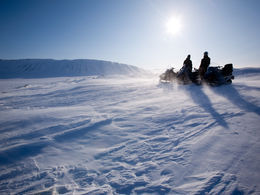 Snowmobile safari in Lapland