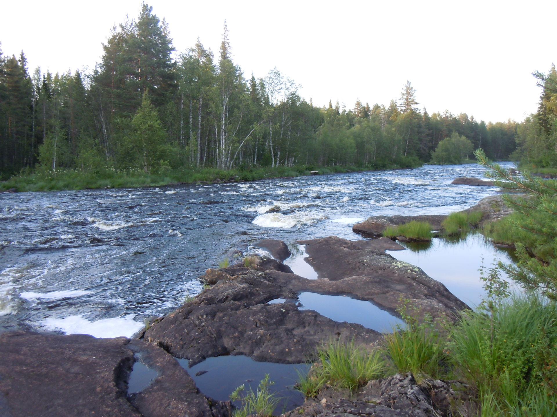 Fly fishing in Swedish Lapland
