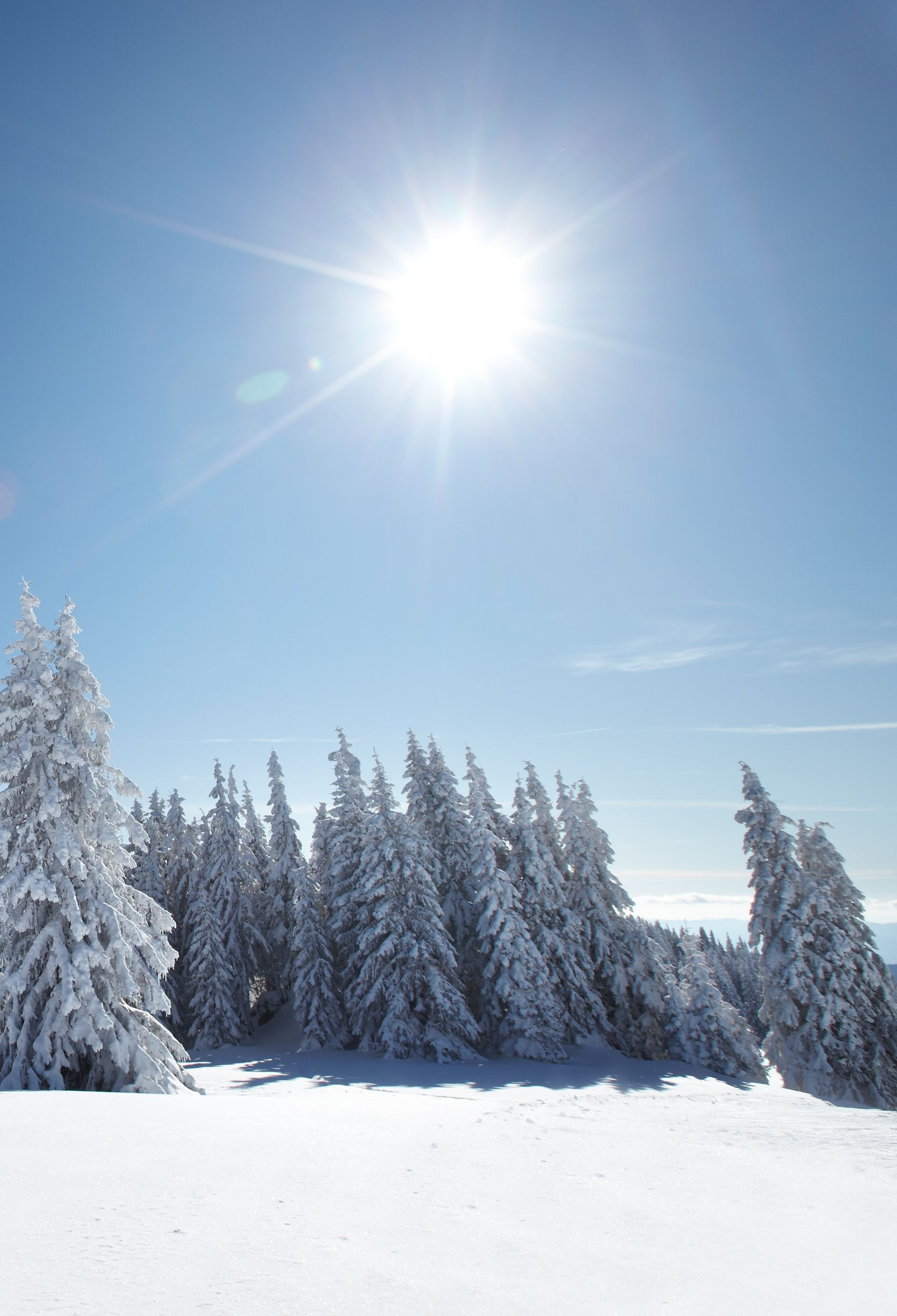 Beautiful winter landscape in Lapland