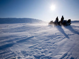 Snowmobiling with the family - Winter activity in Lapland